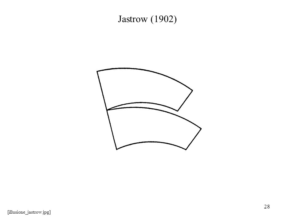 Jastrow (1902) [illusione_jastrow.jpg]